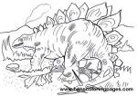 Stegosaurus coloring