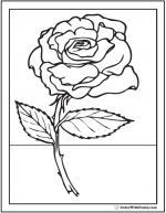 Stem coloring