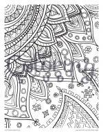 Steve A. Roberts coloring