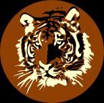 Sumatran Tiger clipart