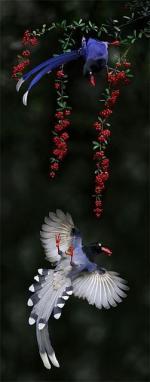 Taiwan Blue Magpie svg