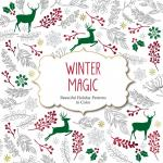 The Winter Of Magic coloring