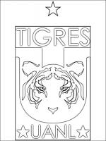 Tigres coloring
