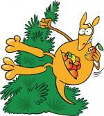 Tree Kangaroo clipart