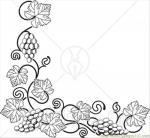 Vines coloring
