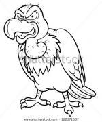 Vulture coloring