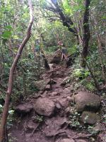 Waimano Falls clipart