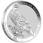 Wedge Tailed Eagle coloring