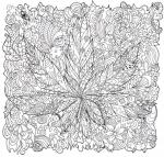 Weed coloring