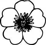 White Flower coloring