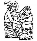 White Shepherd coloring