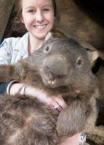 Whopping Wombat coloring
