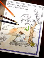 Wilderness coloring