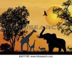 Wildlife clipart