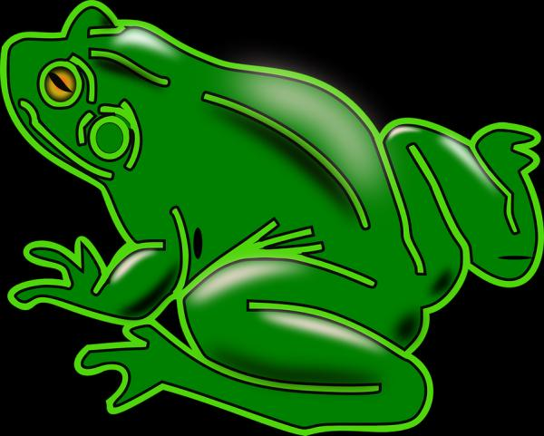 Tree Frog svg