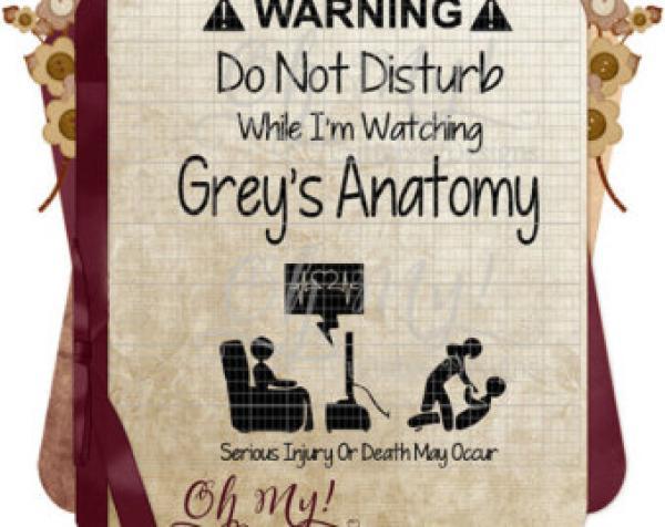 Anatomy svg