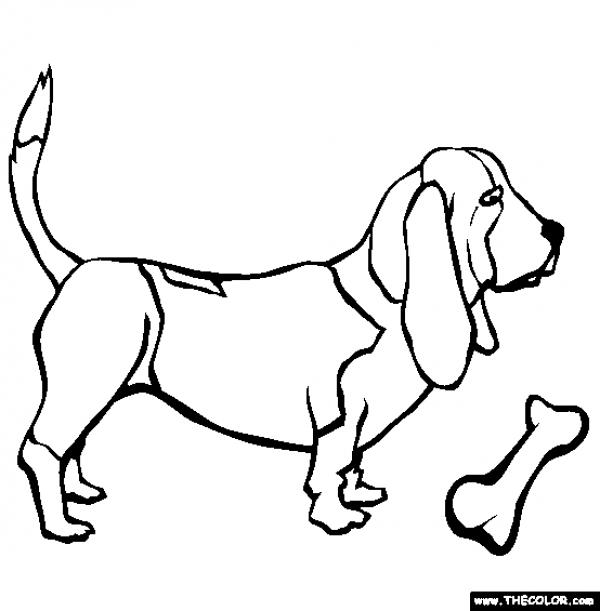 preview Basset Hound coloring