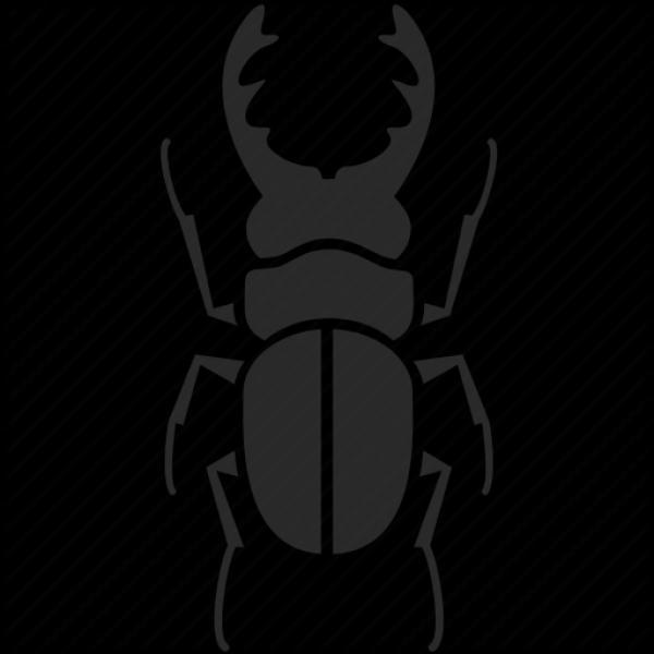 Beetle svg