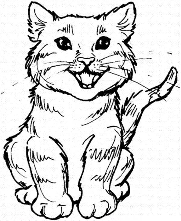 preview Big Cat coloring