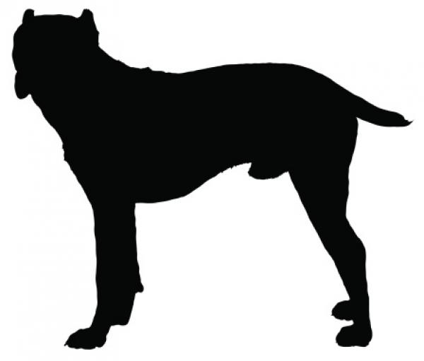 preview Cane Corso clipart