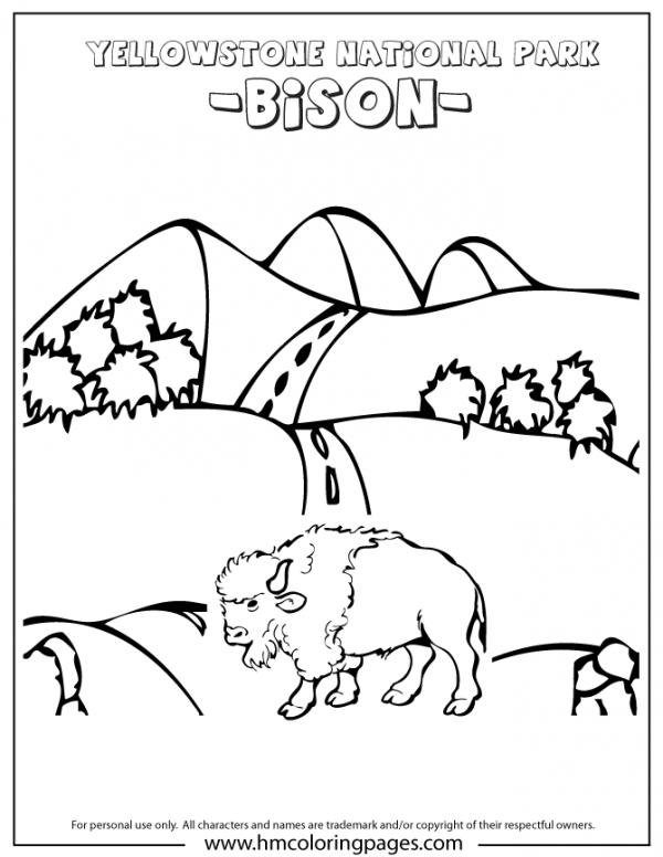 preview Yellowstone coloring