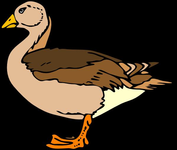 Duck svg