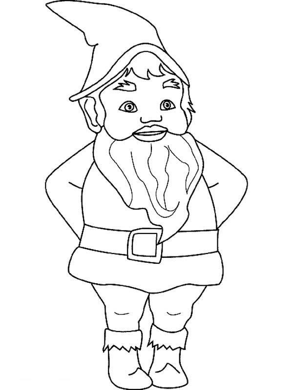 Gnome coloring