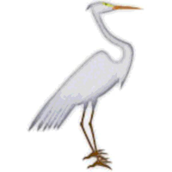 Egret svg