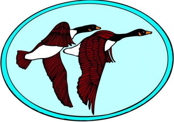 Egyptian Goose svg
