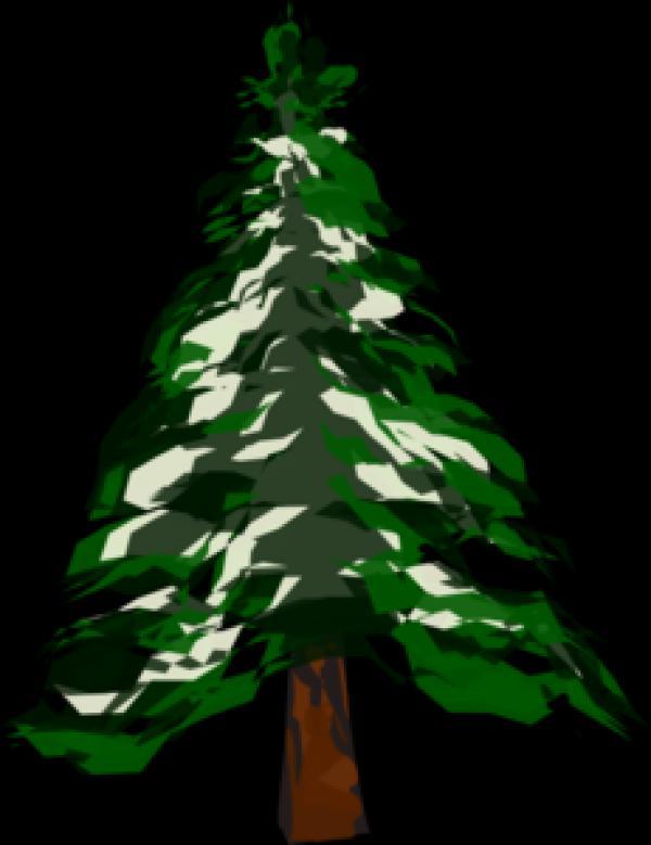 Fir Tree clipart