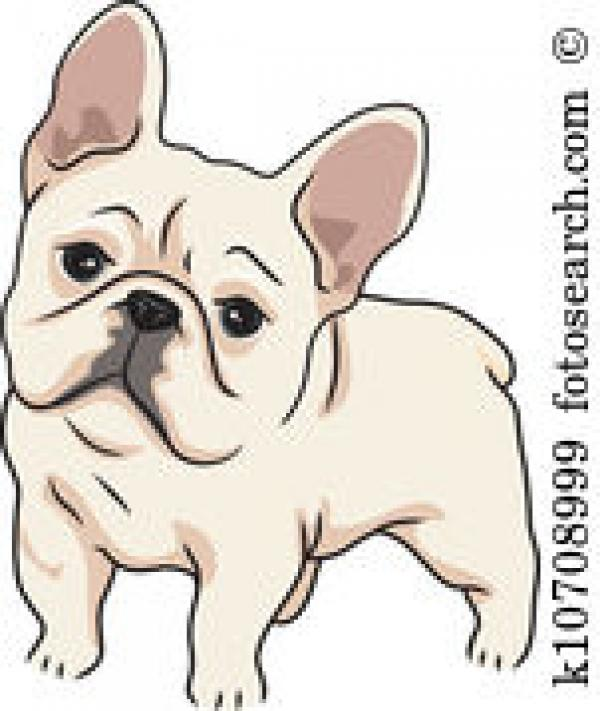 preview French Bulldog clipart