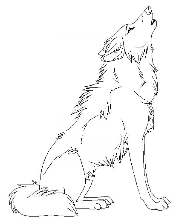 Howling coloring