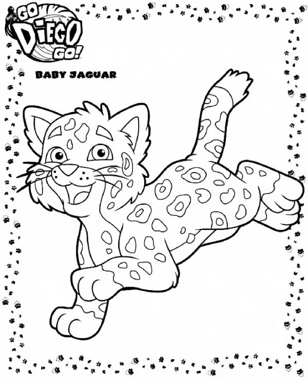 Jaguar coloring