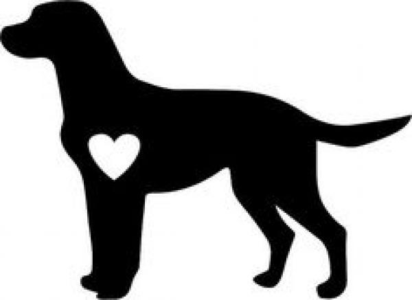 preview Labrador svg
