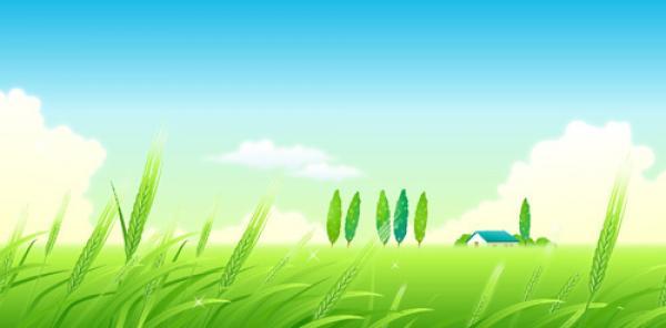 Landscape svg