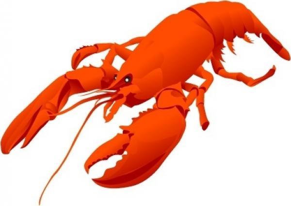 Lobster svg