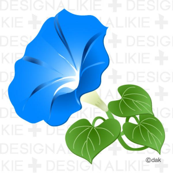 Morning Glory clipart