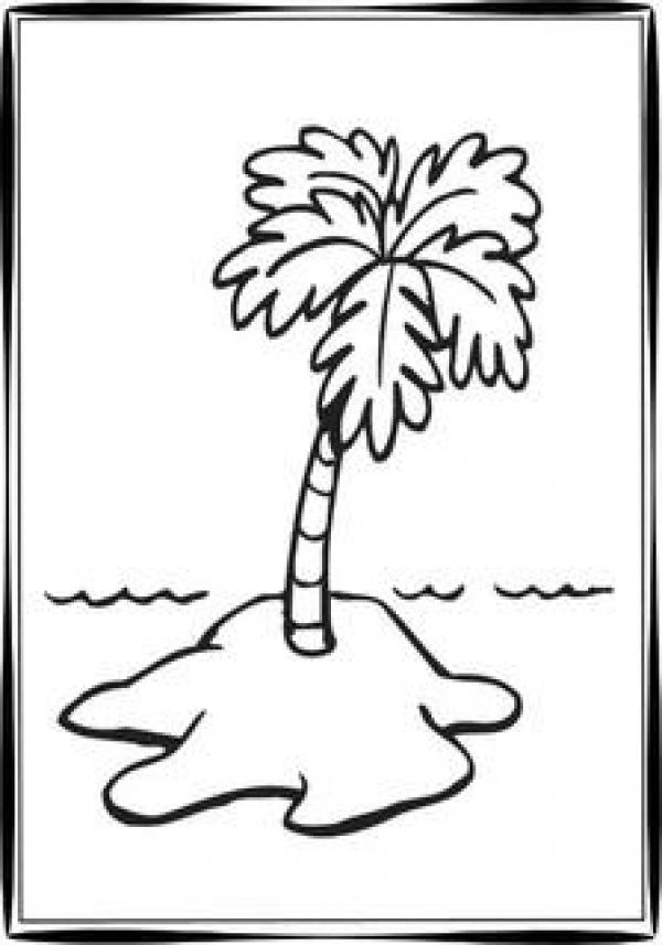Palm Tree coloring