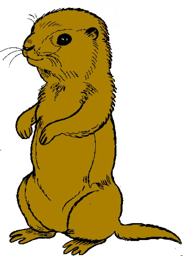 preview Prairie Dog clipart