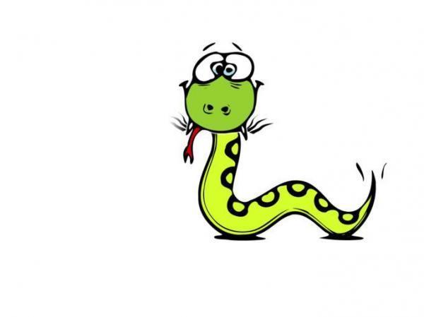 Python Regius svg