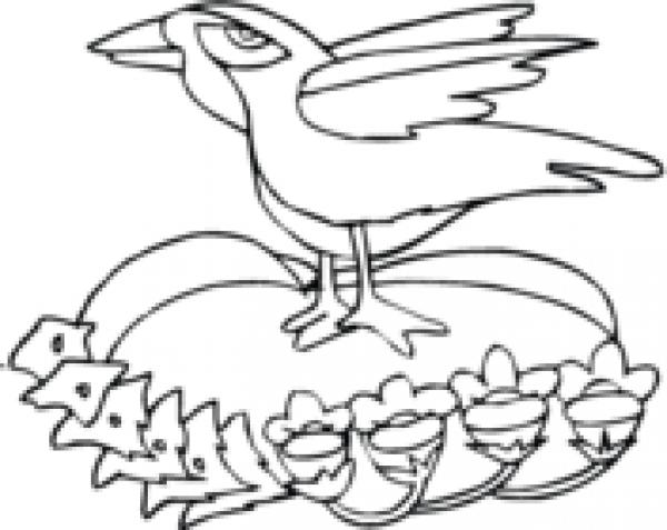 Raven coloring