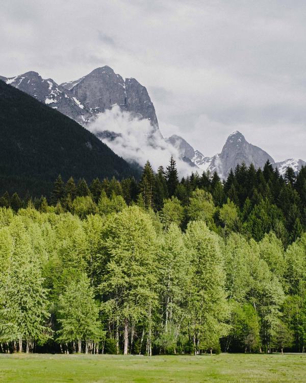 Skagit Mountains clipart