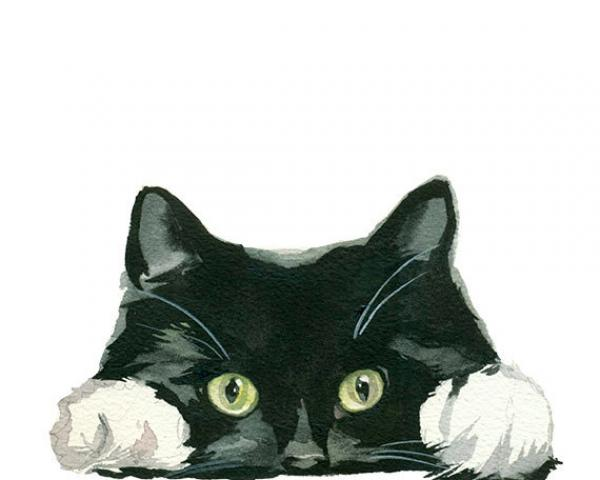 preview Tuxedo Cat clipart