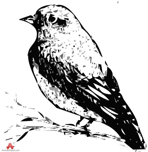 Warbler clipart