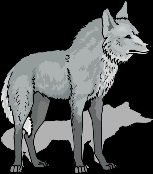 Wolf clipart