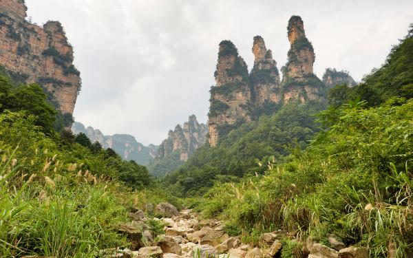 preview Zhangjiajie National Park svg
