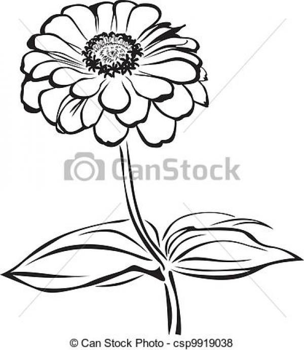 preview Zinnia clipart