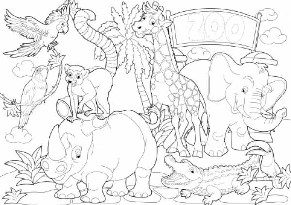 preview Zoo coloring